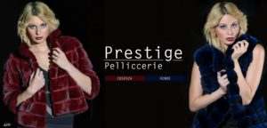 585x280-prestige-5-2